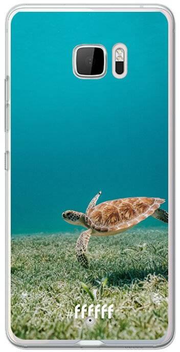 Turtle U Ultra